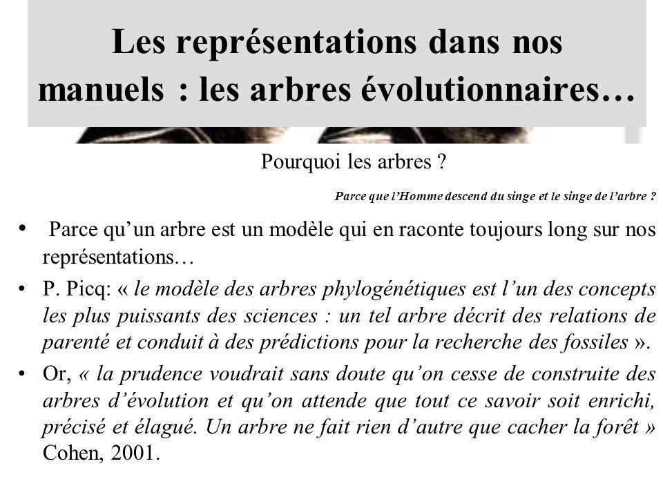 Les représentations dans nos manuels : les arbres évolutionnaires… Pourquoi les arbres ? Parce que lHomme descend du singe et le singe de larbre ? Par