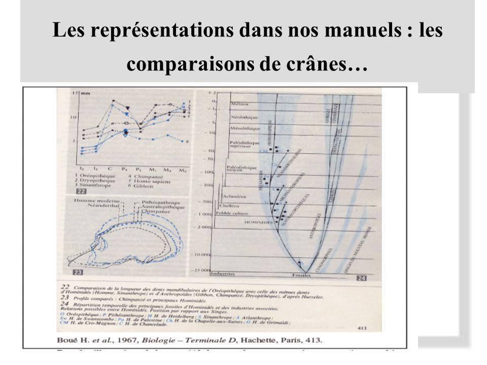 Les représentations dans nos manuels : les comparaisons de crânes…