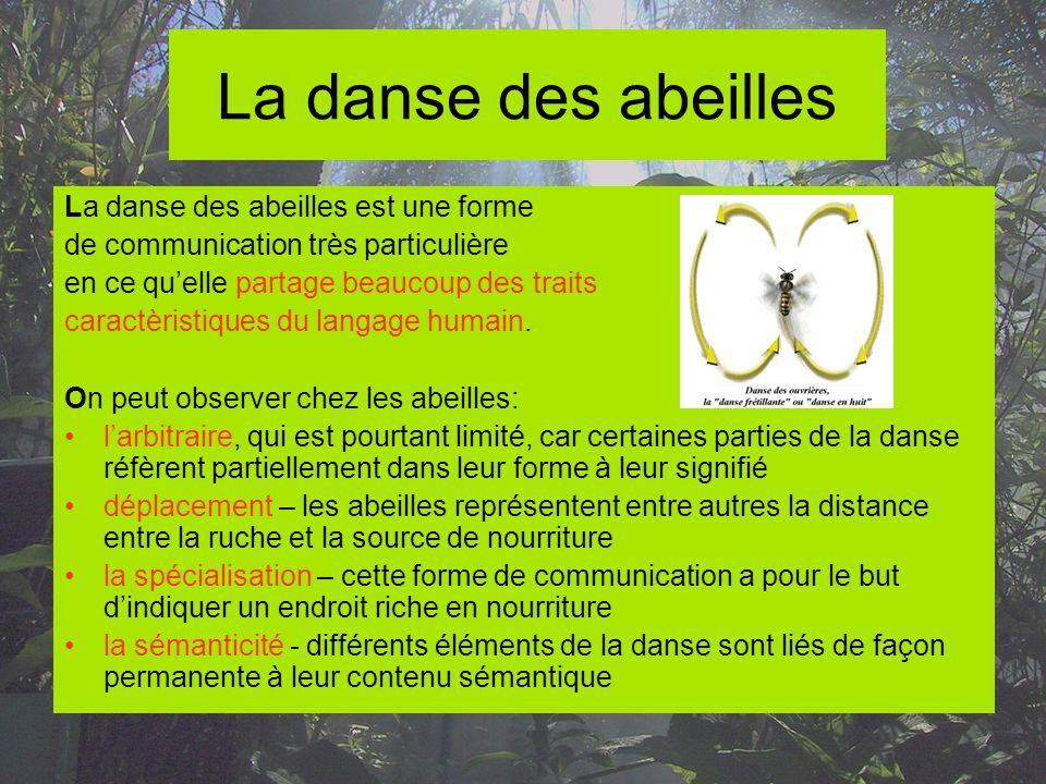 La danse des abeilles La danse des abeilles est une forme de communication très particulière en ce quelle partage beaucoup des traits caractèristiques