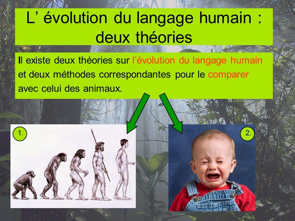La première théorie présume que le langage humain a évolué dun simple système des cris, produits par des primates.