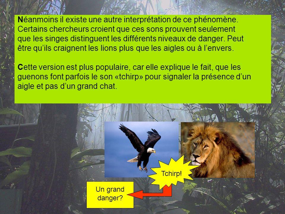 Néanmoins il existe une autre interprétation de ce phénomène. Certains chercheurs croient que ces sons prouvent seulement que les singes distinguent l