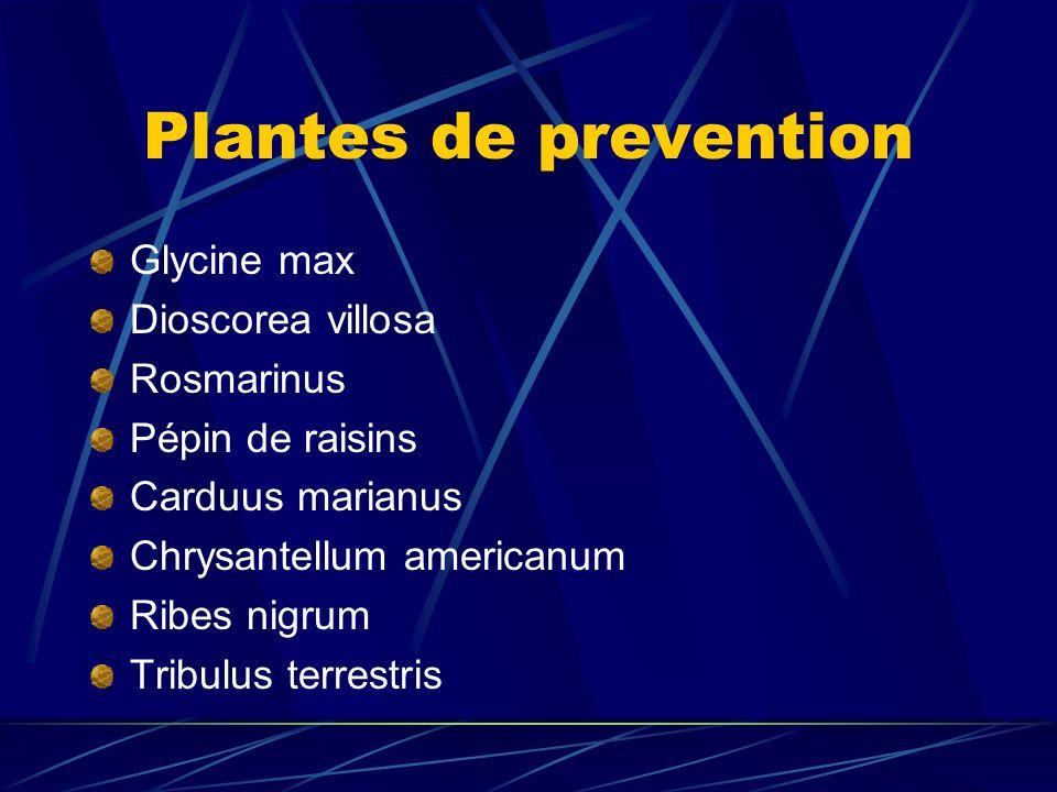 Plantes de prevention Glycine max Dioscorea villosa Rosmarinus Pépin de raisins Carduus marianus Chrysantellum americanum Ribes nigrum Tribulus terrestris