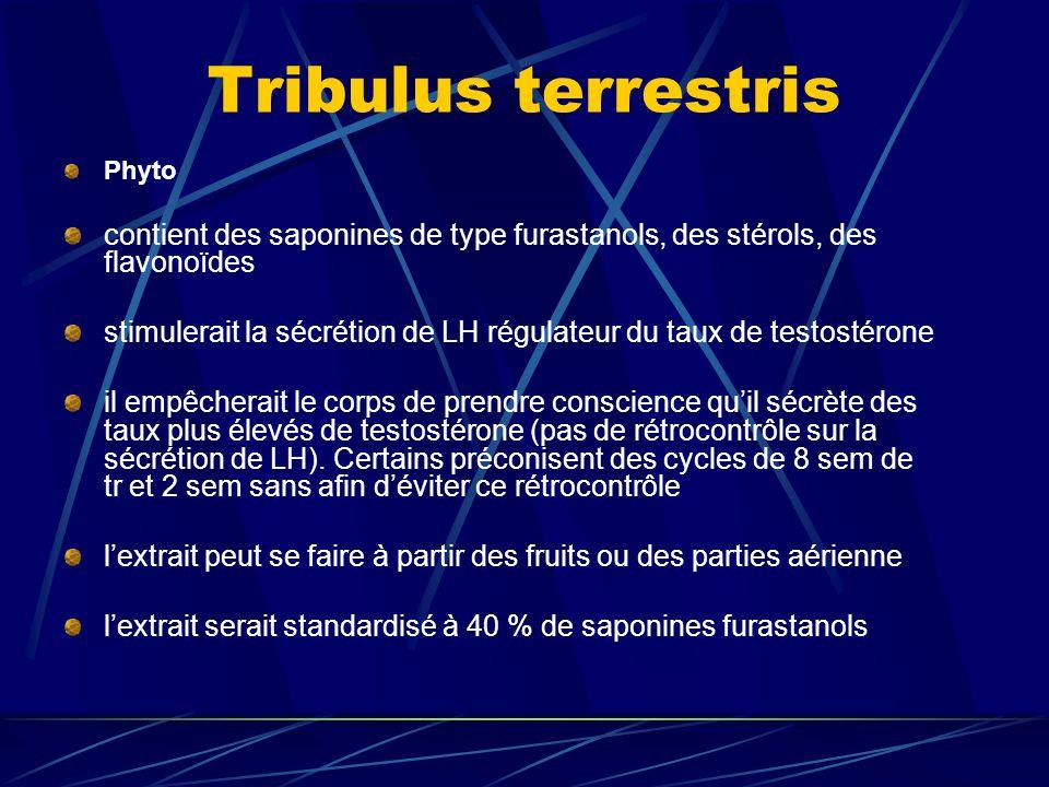 Phyto contient des saponines de type furastanols, des stérols, des flavonoïdes stimulerait la sécrétion de LH régulateur du taux de testostérone il empêcherait le corps de prendre conscience quil sécrète des taux plus élevés de testostérone (pas de rétrocontrôle sur la sécrétion de LH).