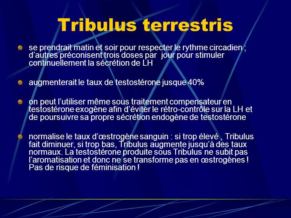Tribulus terrestris se prendrait matin et soir pour respecter le rythme circadien ; dautres préconisent trois doses par jour pour stimuler continuellement la sécrétion de LH augmenterait le taux de testostérone jusque 40% on peut lutiliser même sous traitement compensateur en testostérone exogène afin déviter le rétro-contrôle sur la LH et de poursuivre sa propre sécrétion endogène de testostérone normalise le taux dœstrogène sanguin : si trop élevé, Tribulus fait diminuer, si trop bas, Tribulus augmente jusquà des taux normaux.