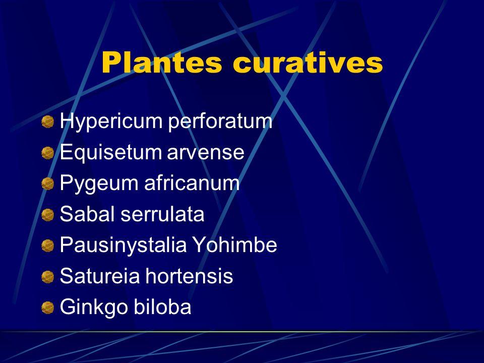 Plantes curatives Hypericum perforatum Equisetum arvense Pygeum africanum Sabal serrulata Pausinystalia Yohimbe Satureia hortensis Ginkgo biloba