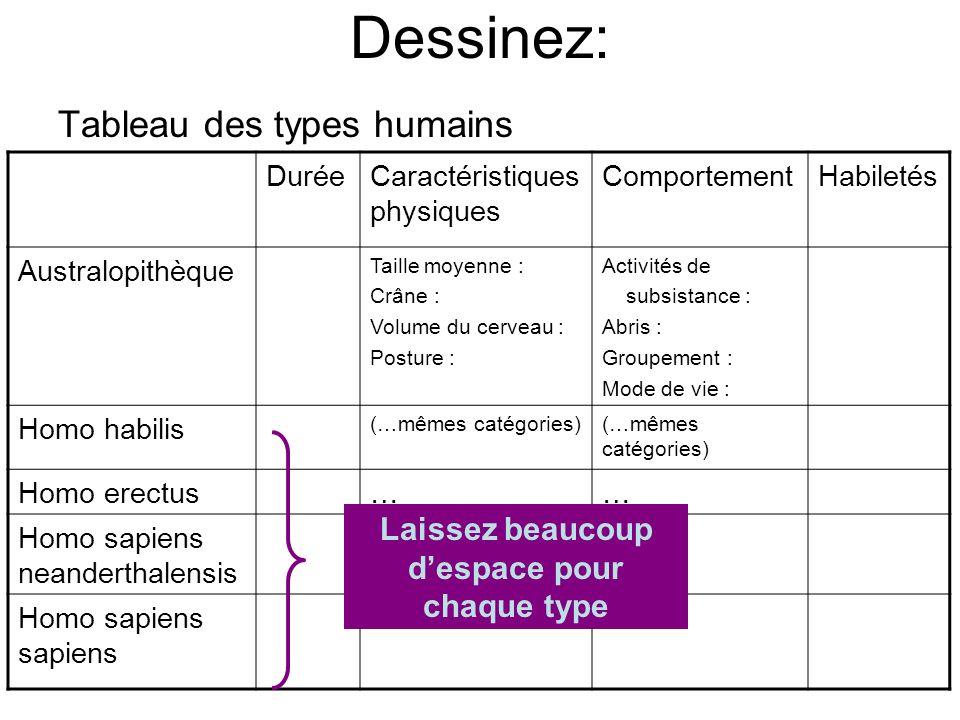 Dessinez: Tableau des types humains DuréeCaractéristiques physiques ComportementHabiletés Australopithèque Taille moyenne : Crâne : Volume du cerveau