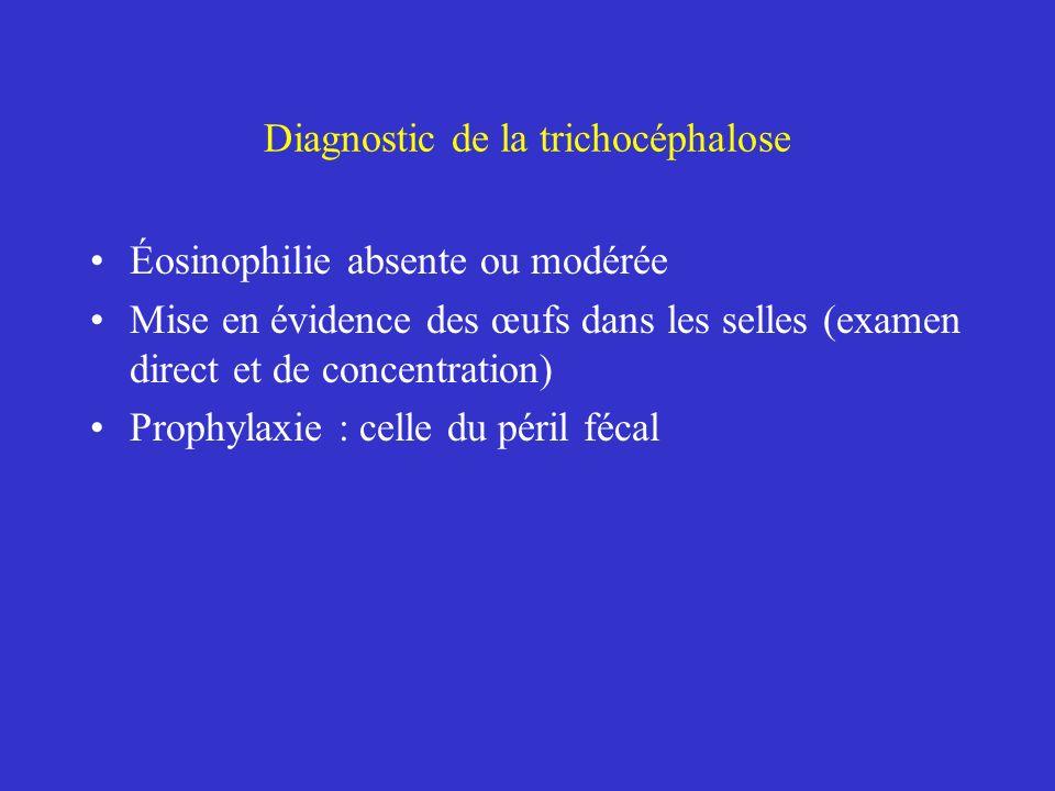 Diagnostic de la trichocéphalose Éosinophilie absente ou modérée Mise en évidence des œufs dans les selles (examen direct et de concentration) Prophyl