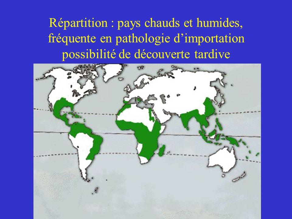 Répartition : pays chauds et humides, fréquente en pathologie dimportation possibilité de découverte tardive