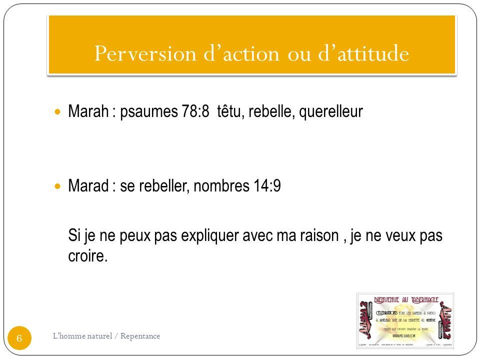 Perversion daction ou dattitude Marah : psaumes 78:8 têtu, rebelle, querelleur Marad : se rebeller, nombres 14:9 Si je ne peux pas expliquer avec ma raison, je ne veux pas croire.