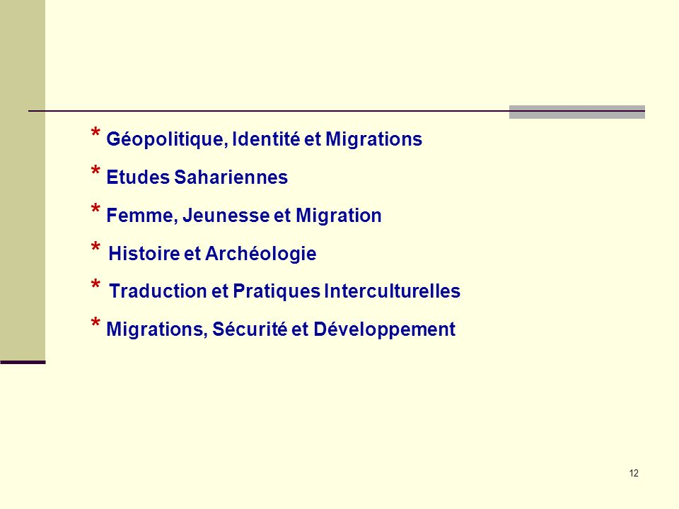 * Géopolitique, Identité et Migrations * Etudes Sahariennes * Femme, Jeunesse et Migration * Histoire et Archéologie * Traduction et Pratiques Interculturelles * Migrations, Sécurité et Développement 12