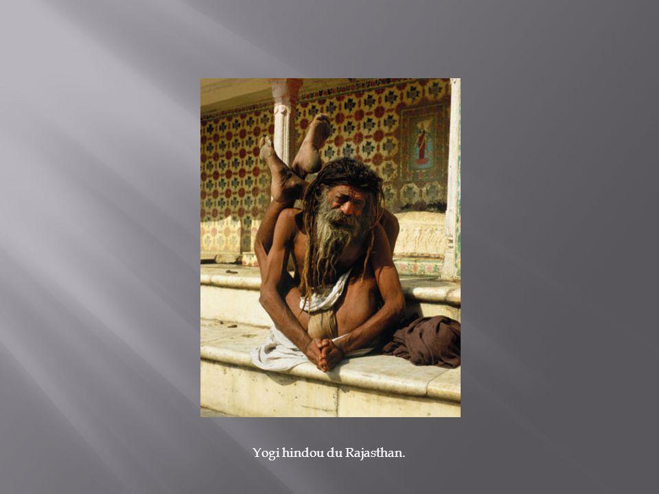 Yogi hindou du Rajasthan.