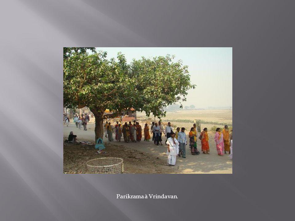 Parikrama à Vrindavan.