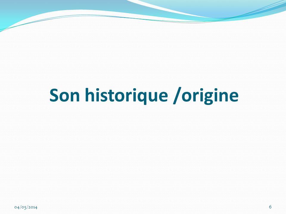 Son historique /origine 04/05/20146