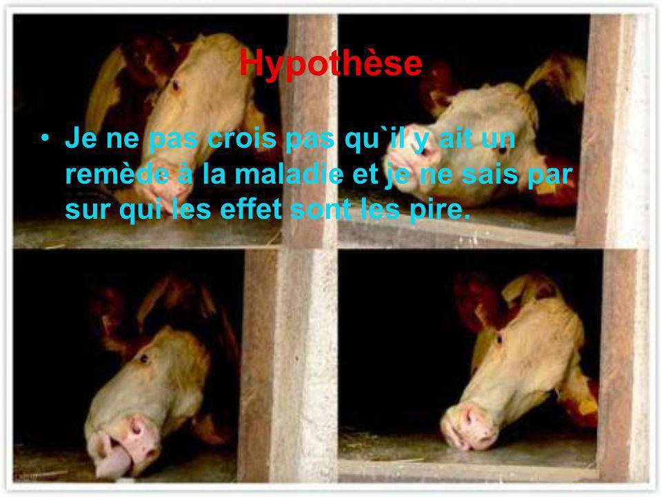 Maladie de la vache folle Très dangereuse Système nerveux Personne n`est à labri