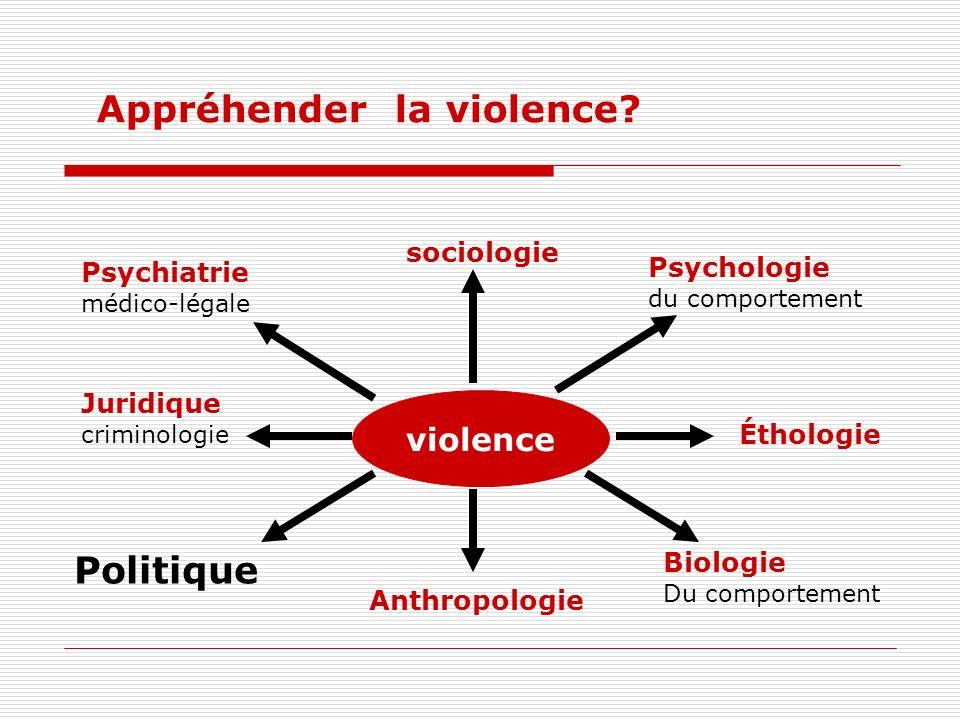 Appréhender la violence.