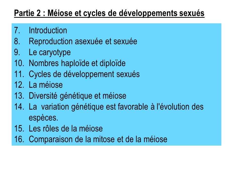 7.Introduction 8.Reproduction asexuée et sexuée 9.Le caryotype 10.Nombres haploïde et diploïde 11.Cycles de développement sexués 12.La méiose 13.Diversité génétique et méiose 14.La variation génétique est favorable à l évolution des espèces.
