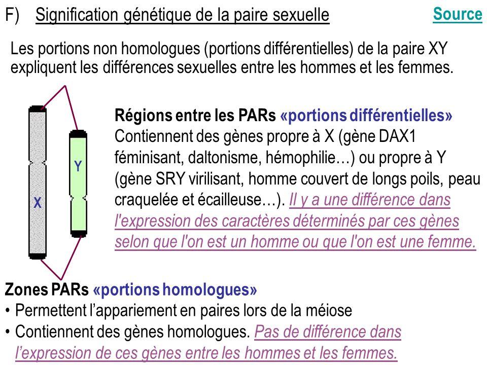 F)Signification génétique de la paire sexuelle Régions entre les PARs «portions différentielles» Contiennent des gènes propre à X (gène DAX1 féminisant, daltonisme, hémophilie…) ou propre à Y (gène SRY virilisant, homme couvert de longs poils, peau craquelée et écailleuse…).