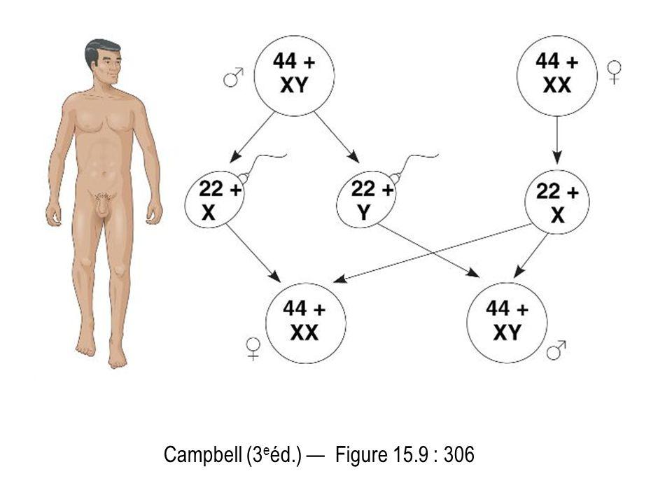 Campbell (3 e éd.) Figure 15.9 : 306