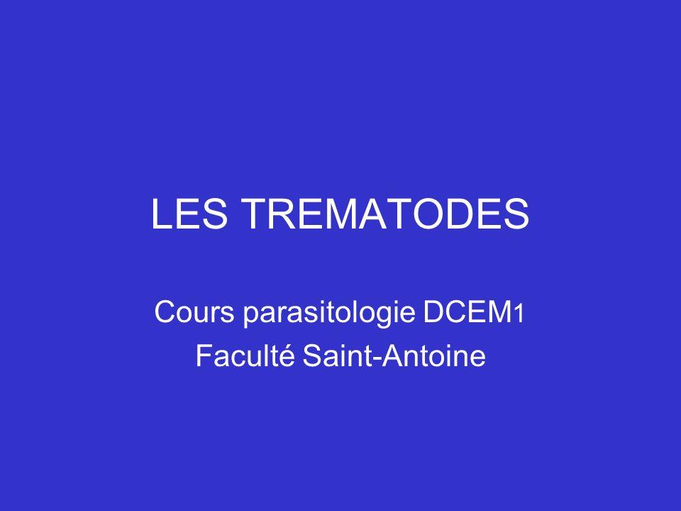 LES TREMATODES Cours parasitologie DCEM 1 Faculté Saint-Antoine