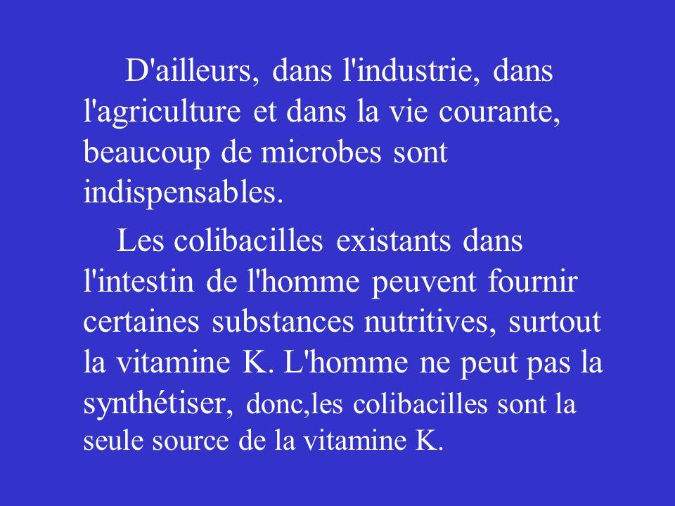 D'ailleurs, dans l'industrie, dans l'agriculture et dans la vie courante, beaucoup de microbes sont indispensables. Les colibacilles existants dans l'