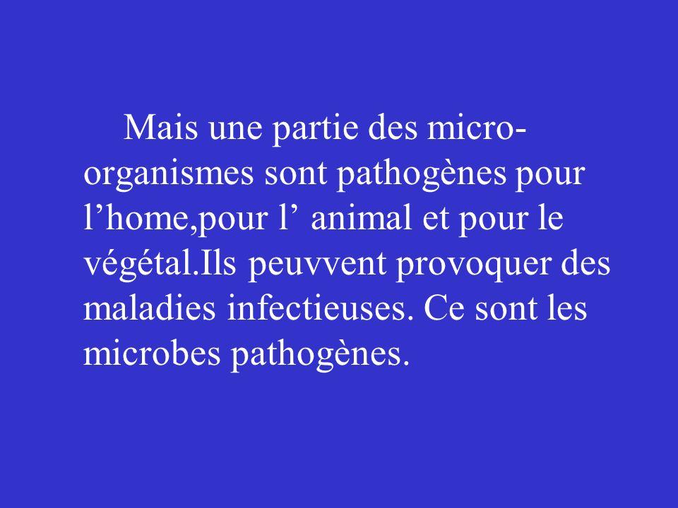Mais une partie des micro- organismes sont pathogènes pour lhome,pour l animal et pour le végétal.Ils peuvvent provoquer des maladies infectieuses. Ce