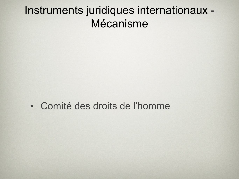 Instruments juridiques internationaux - Mécanisme Comité des droits de lhomme