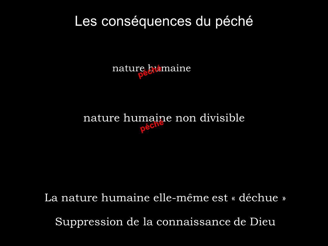 3.a L imago dei Capacités naturelles / surnaturelles .