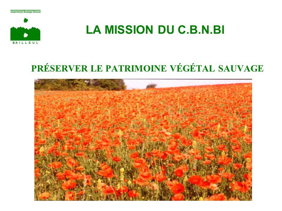 LA MISSION DU C.B.N.Bl PRÉSERVER LE PATRIMOINE VÉGÉTAL SAUVAGE