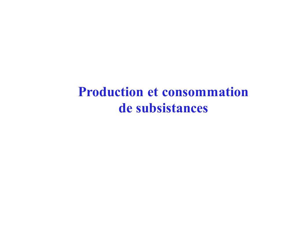 Production et consommation de subsistances