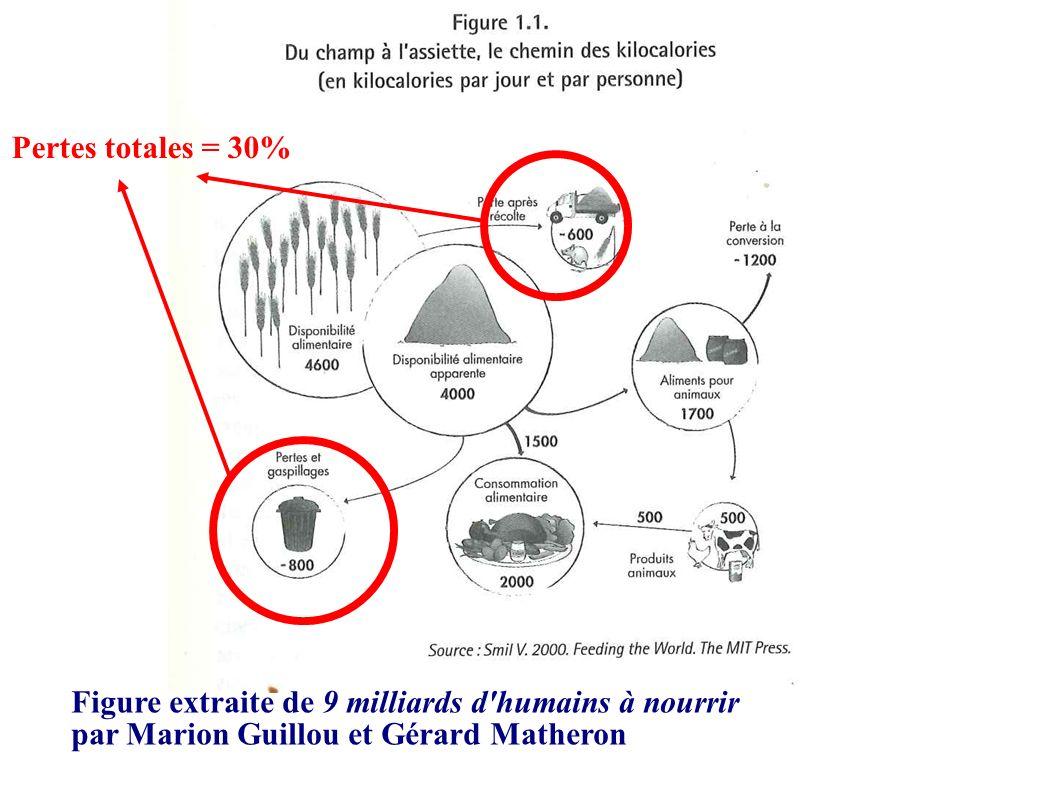Figure extraite de 9 milliards d'humains à nourrir par Marion Guillou et Gérard Matheron Pertes totales = 30%