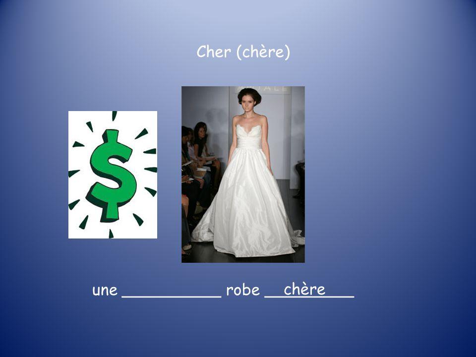 Cher (chère) une __________ robe _________ chère