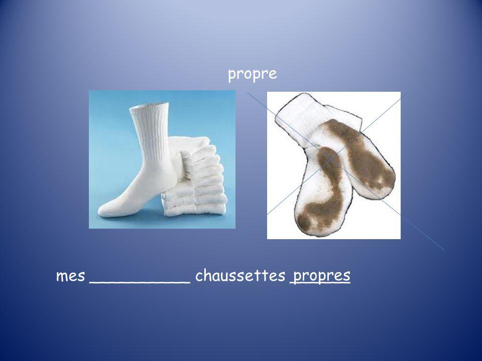 propres propre mes __________ chaussettes ______