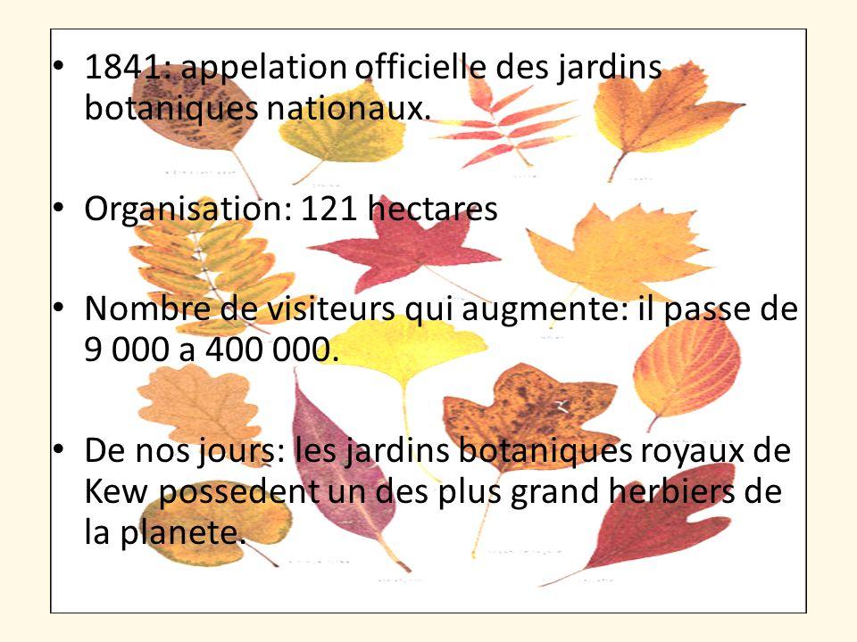1841: appelation officielle des jardins botaniques nationaux. Organisation: 121 hectares Nombre de visiteurs qui augmente: il passe de 9 000 a 400 000