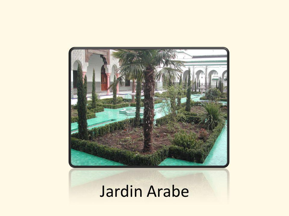 Jardin Arabe