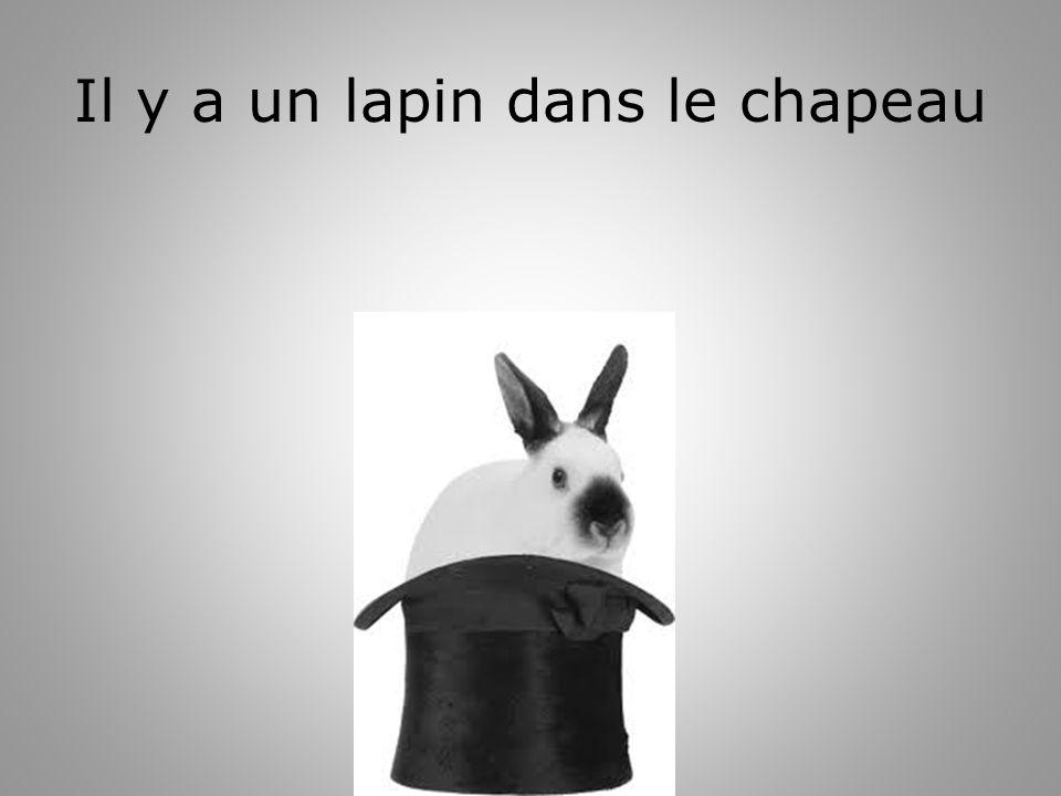 Il y a un lapin dans le chapeau