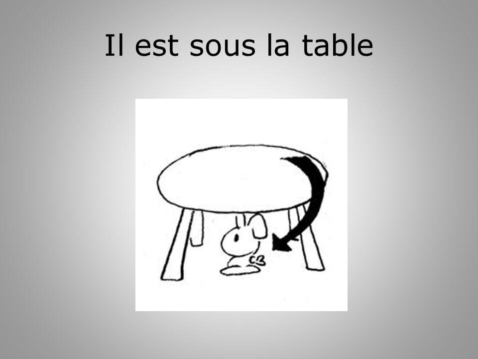 Il est sous la table