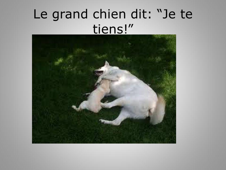 Le grand chien dit: Je te tiens!