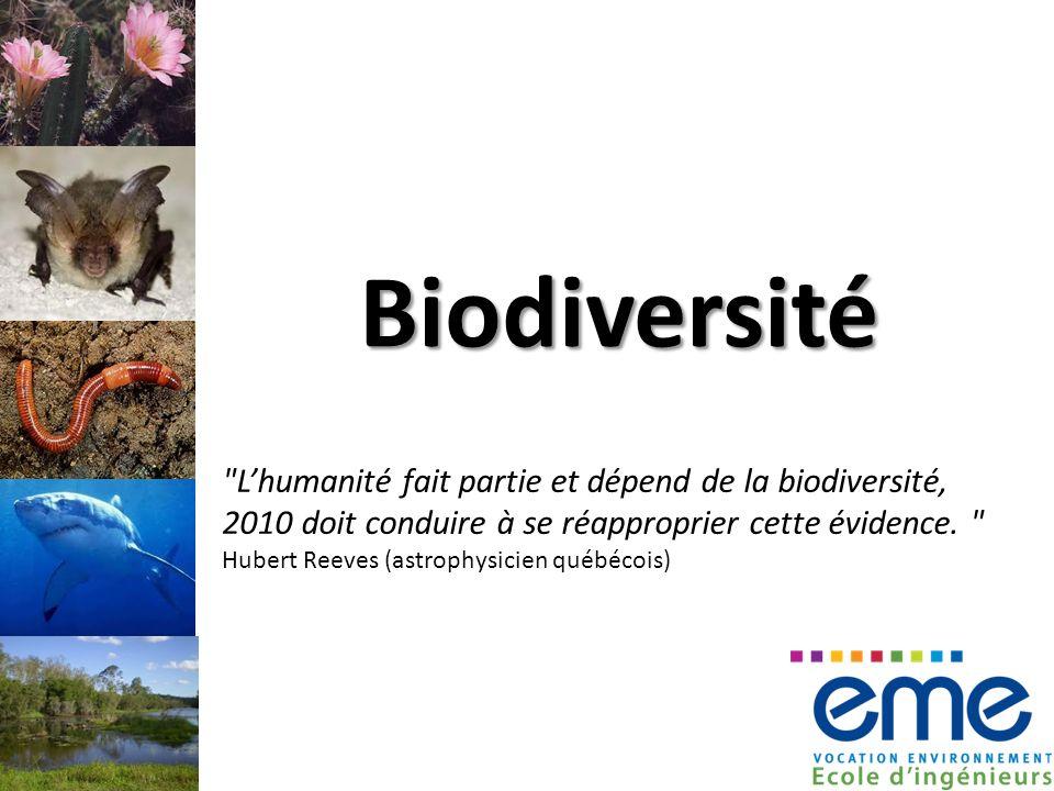 Biodiversité Lhumanité fait partie et dépend de la biodiversité, 2010 doit conduire à se réapproprier cette évidence.
