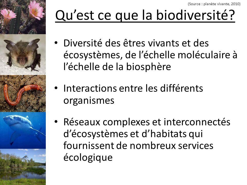 Quest ce que la biodiversité.