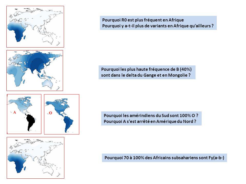 Pourquoi R0 est plus fréquent en Afrique Pourquoi y a-t-il plus de variants en Afrique quailleurs ? Pourquoi les plus haute fréquence de B (40%) sont