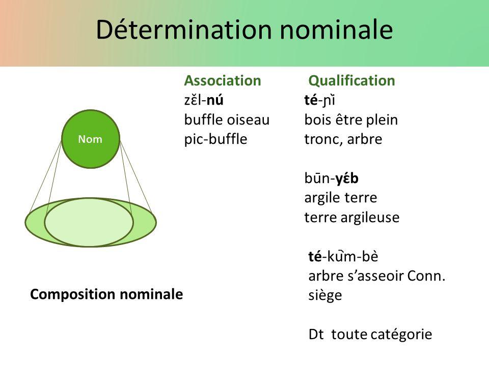 Détermination nominale Nom AssociationQualification zɛ̌l-núté-ɲì buffle oiseaubois être plein pic-buffle tronc, arbre būn-yɛ́b argile terre terre