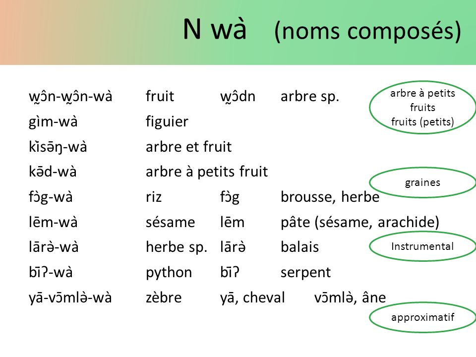 N wà (noms composés) w̰ɔ̂n-w̰ɔ̂n-wàfruitw̰ɔ̂dn arbre sp. gìm-wàfiguier kìsə̄ŋ-wàarbre et fruit kə̄d-wàarbre à petits fruit fɔ̀g-wàrizfɔ̀gbrous
