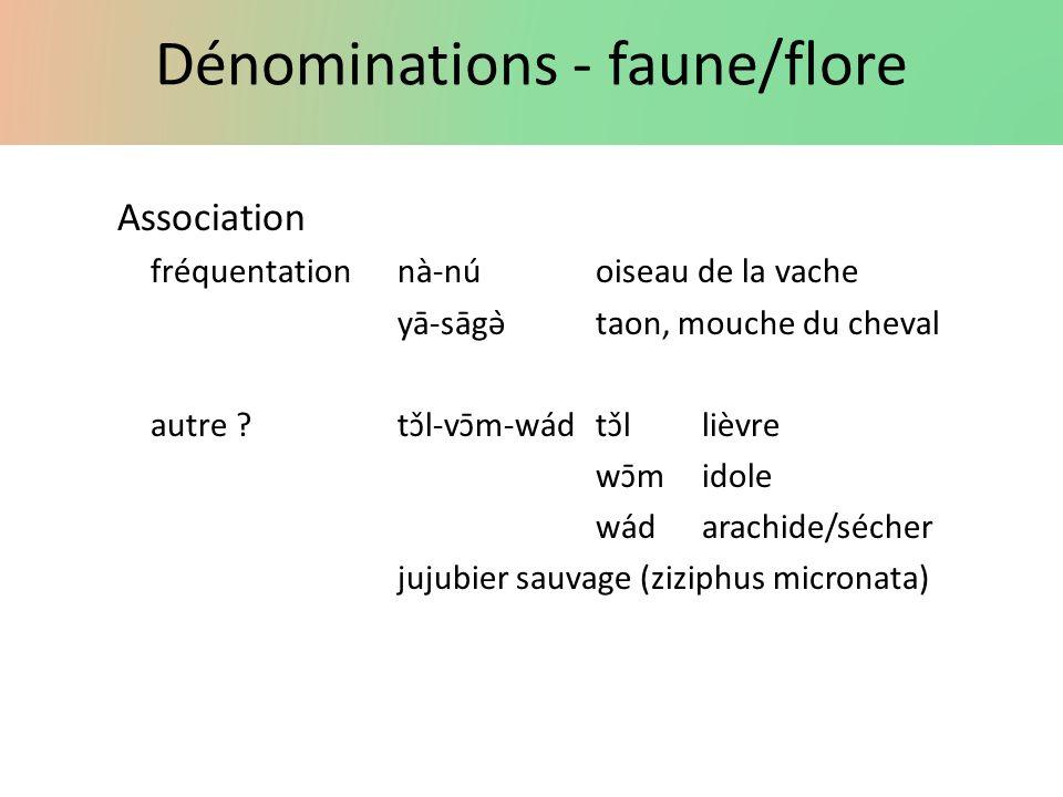 Dénominations - faune/flore Association fréquentationnà-núoiseau de la vache yā-sāgə̀taon, mouche du cheval autre ? tɔ̌l-vɔ̄m-wádtɔ̌llièvre wɔ̄mi