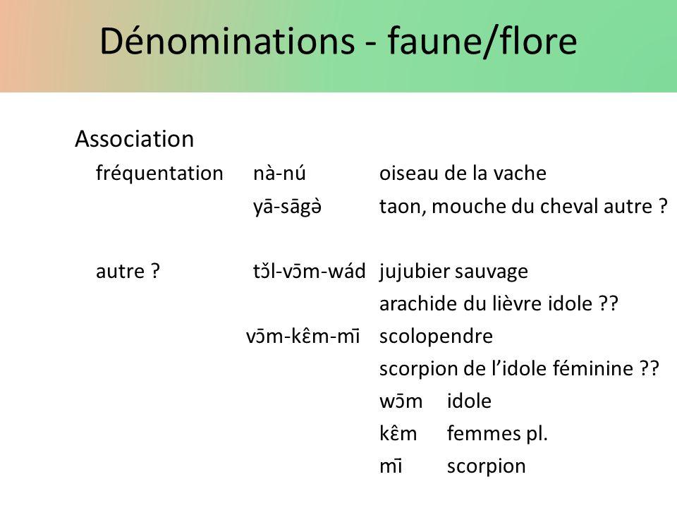 Dénominations - faune/flore Association fréquentationnà-núoiseau de la vache yā-sāgə̀taon, mouche du cheval autre ? autre ?tɔ̌l-vɔ̄m-wádjujubier