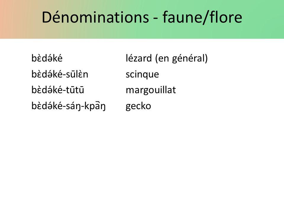 Dénominations - faune/flore bɛ̀də́kélézard (en général) bɛ̀də́ké-sūlɛ̀nscinque bɛ̀də́ké-tūtūmargouillat bɛ̀də́ké-sáŋ-kpaŋgecko