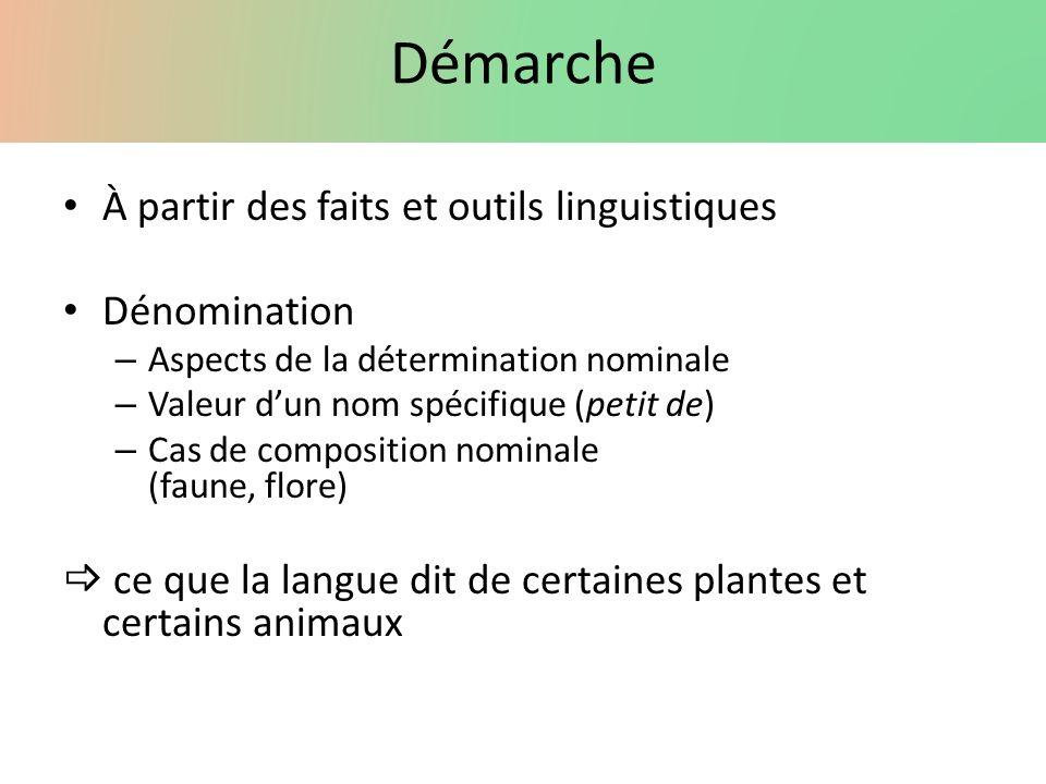 Démarche À partir des faits et outils linguistiques Dénomination – Aspects de la détermination nominale – Valeur dun nom spécifique (petit de) – Cas d