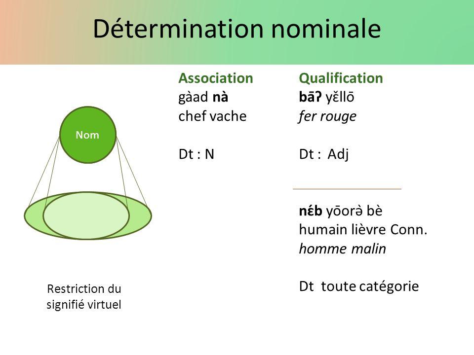 Détermination nominale Nom AssociationQualification gàad nàbāʔ yɛ̌llō chef vachefer rouge Dt : NDt :Adj nɛ́b yōorə̀ bè humain lièvre Conn. homme