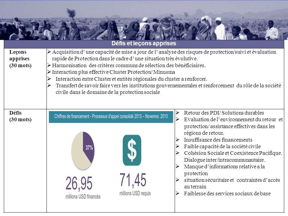 Besoins sectoriels 2014 Plan de réponse sectoriel: activités clés Assistance aux PDIs et aux retournés.