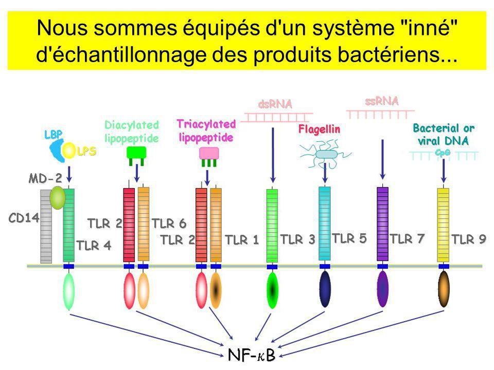 Nous sommes équipés d un système inné d échantillonnage des produits bactériens...