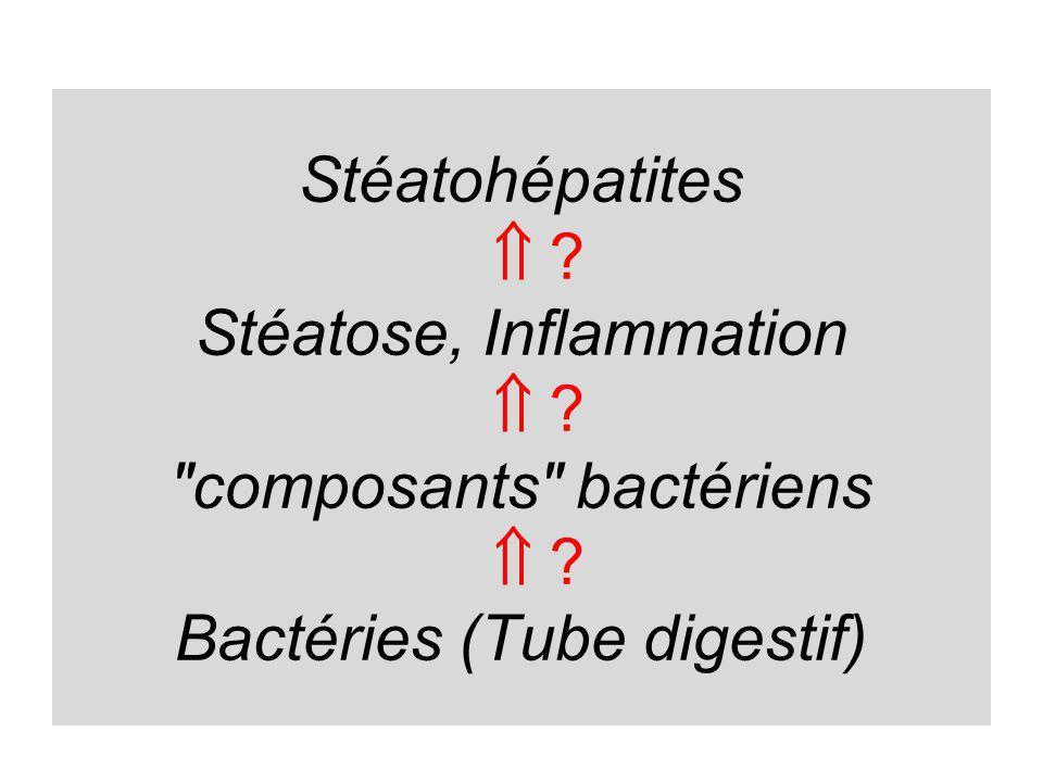 Microbiote Stéatose SH Microbiote, obésité et lipogénèse Microbiote et « thermostat inflammatoire »